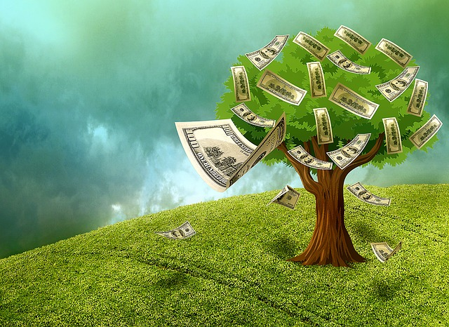 padající peníze ze stromu.jpg